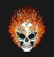 skull in fire flame on black background vector image vector image