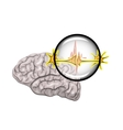 the brain and neurons vector image