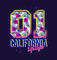 california lifestyle print for t-shirt vector image