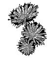 grunge daisy flower vector image vector image