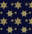 stars line pattern vector image