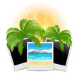 Summertime background with set photo frames vector image vector image
