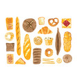 bundle of breads and homemade baked products of vector image vector image