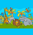 cartoon safari wild animal characters group vector image vector image