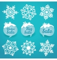 Collection of snowflakes and sale lables Winter vector image