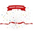 Grand opening background with confetti vector image vector image