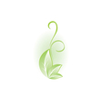 green plant for design vector image vector image