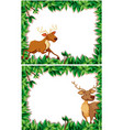 set of deer in nature frame vector image vector image