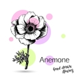 anemone flower for wedding or birthday card vector image