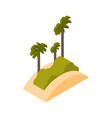 beach with palms icon isometric isolated sea vector image vector image