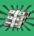 cartoon money dollars packaging banknotes vector image