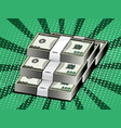 Cartoon money dollars packaging of banknotes vector image
