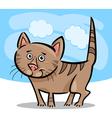 cartoon of cat or kitten vector image vector image