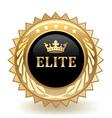 Elite Badge vector image vector image