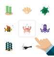 flat icon sea set of seaweed cancer tortoise and vector image vector image