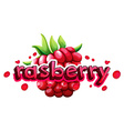 Font design with word rasberry vector image