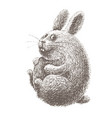 hand drawn cartoon easter bunny isolated on white vector image