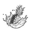 splash milk pineapple vector image vector image