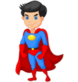 Super hero boy posing vector image