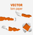 torn edges paper hole lacerated ragged edge and vector image vector image