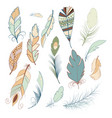 tribal feather bird nature wing element vector image vector image