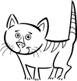 cat or kitten for coloring book vector image vector image