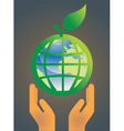 hand holding earth globe 5 vector image vector image