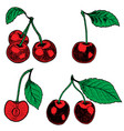 set of hand drawn cherry design elements for vector image