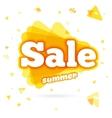 Web Banner sale summer vector image vector image