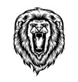 lion head opened his mouth vector image