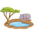 scene with hippo standing pond on white vector image