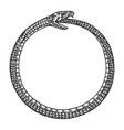 snake bites itself engraving vector image