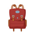 brown knapsack front view travel bag for vector image vector image