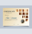 certificate template in for vector image