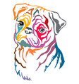 colorful decorative portrait pug dog vector image