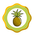 emblem sticker delicious pineapple fruit icon vector image vector image