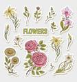 flowers set of stickers wedding botanical garden vector image