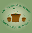 green sprout in a pot sprouts strength of nature vector image