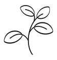 leaves drawing cartoon vector image vector image