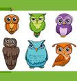 owl bird characters cartoon set vector image