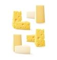 Set of Pieces Cheese Swiss Bri Camembert vector image vector image