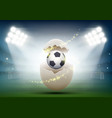 soccer ball in a chicken egg at the stadium vector image vector image
