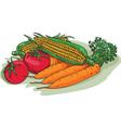 Vegetable Garden Crop Harvest Drawing vector image vector image