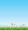 Green grass lawn with chamomile butterflies vector image