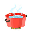 boiling water in pan red cooking pot on stove vector image
