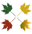 maple leaves red green yellow vector image vector image