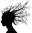 Hair Style Beauty Salon silhouette vector image vector image