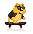 hamster on a skateboard vector image vector image