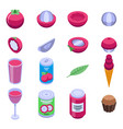 mangosteen icons set isometric style vector image vector image