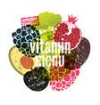 vitamin vegan menu fruit and vegetables poster vector image vector image